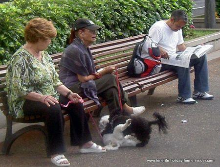 Retirees at Parque Garcia Sanabria