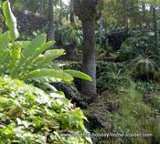 Rock gardens Taoro park Tenerife