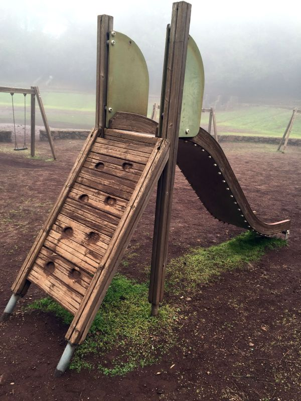 Rustic jungle gym equipment