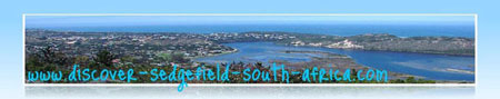 Sedgefield South Africa by admiring whales
