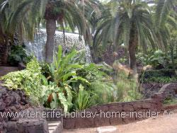 Shade garden design with water edge plants