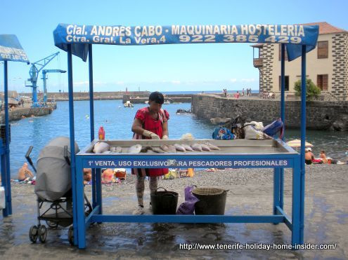 Shopping in Tenerife at a street stall of a fishmonger in Puerto de la Cruz as an option.
