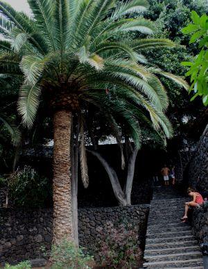 Stairs of Park Puerta de Tierra