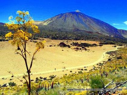 Teide National Park of Tenerife Spain