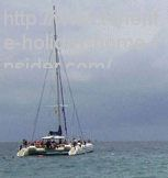 Tenerife catamaran tours