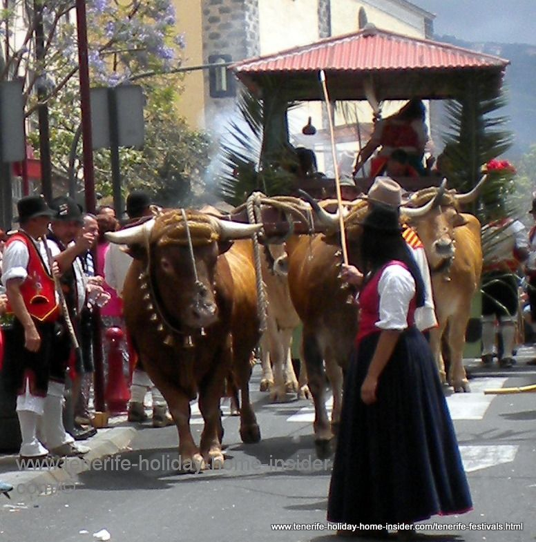 Tenerife cow-girl wife of farmer