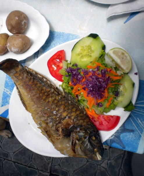 Tenerife Dorada fish a la Timon