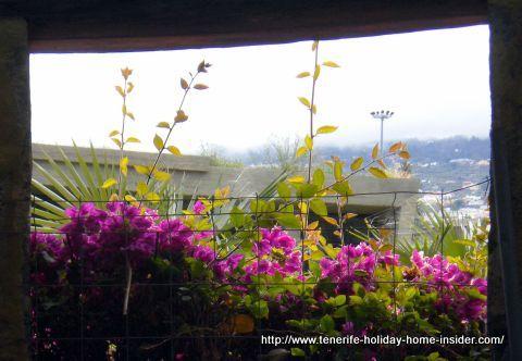Tenerife Jardin de acclimatizacion news