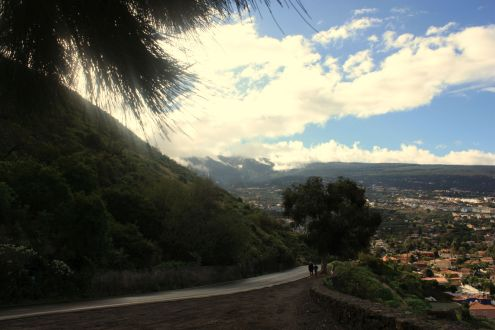 Tenerife North with typical landscape by the Mirador Humboldt Orotava.