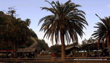 Tenerife picnic barbecue park Campechesde Ruiz.