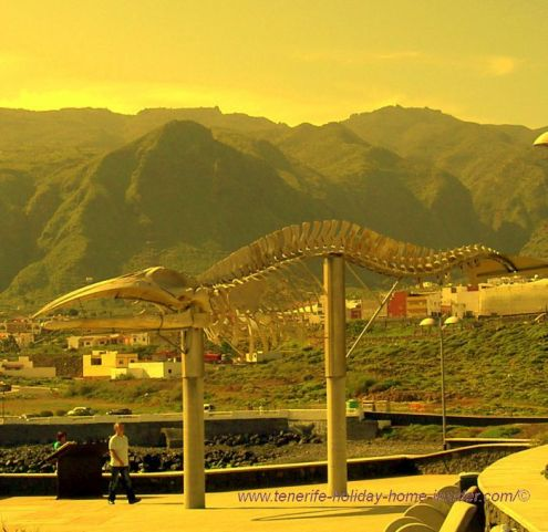 Tenerife whale skeleton museum in the open air at Los Silos beach near the Marina.