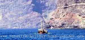 Whale watching off Los Gigantes Tenerife