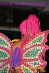 butterfly wings of Tenerife carnival