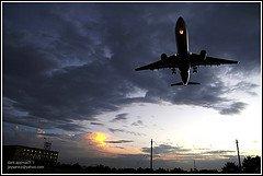 Economic airbus flights