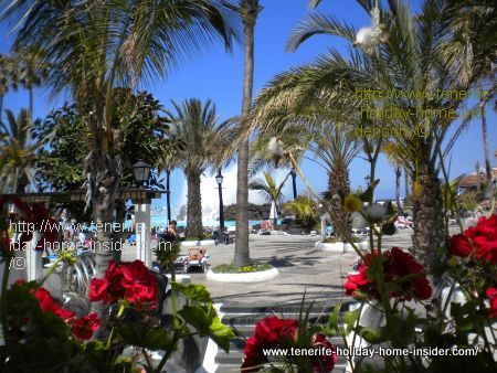 Climate in Tenerife Spain