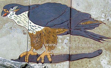 Falcon of Ruiz el Rosario