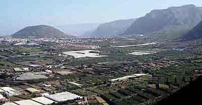 Farmlands Buenavista and Los Silos