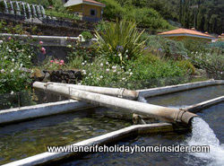 Farm with waterfall  at Aguamansa Tenerife