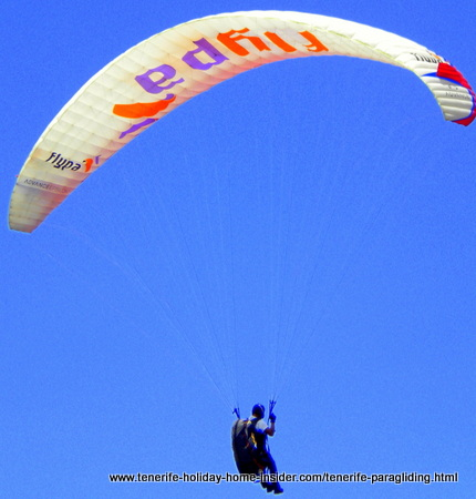 Flypa displayed on paragliding wing