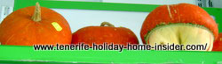 Funny pumpkins natural  without decoration
