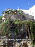 Hanging garden in Calle Los Barros of Realejo.