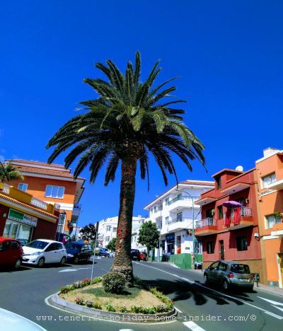 La Longuera which is a suburb of Los Realejos also means long mile road