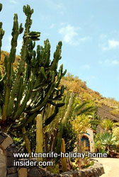 Nature reserve entrance of the Monastery Park of Tenerife.