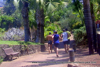 Parque Taoro a Tenerife paradise for walking, joggers, aerobics, dog socializing and more.