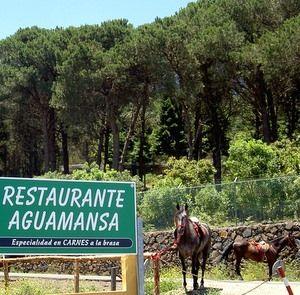 Restaurante Aguamansa on the way from La  Orotava to Teide.