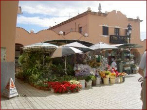 Santa Cruz Mercado la Recova Tenerife African Market