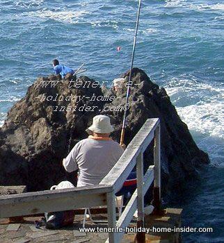 Self catering Tenerife by fishing on Punta Brava of Puerto de la Cruz Spain.