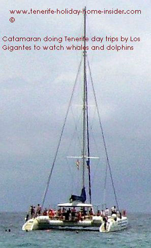 Tenerife days trips with Catamaran by Los Gigantes
