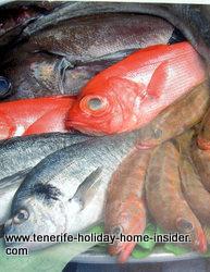 Tenerife fish Puerto de la Cruz Spain
