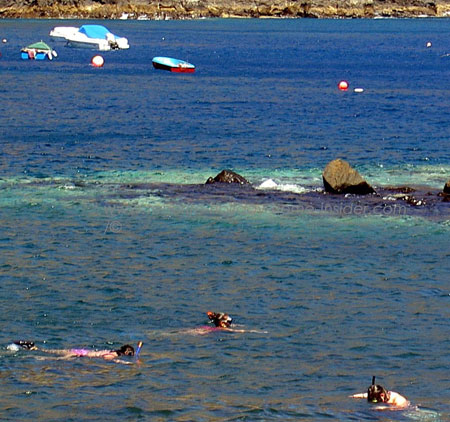 Tenerife snorkeling by Punta del Teno