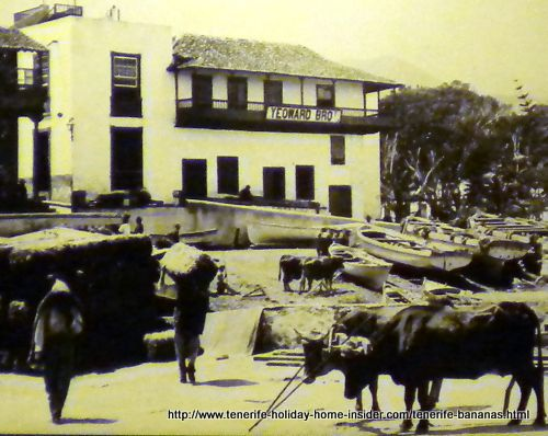 Yeoward Brothers warehouse at port Puerto de la Cruz